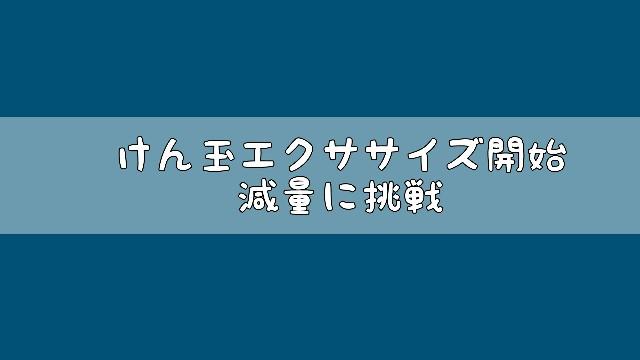 f:id:hira2shiatsu:20180227160517j:image