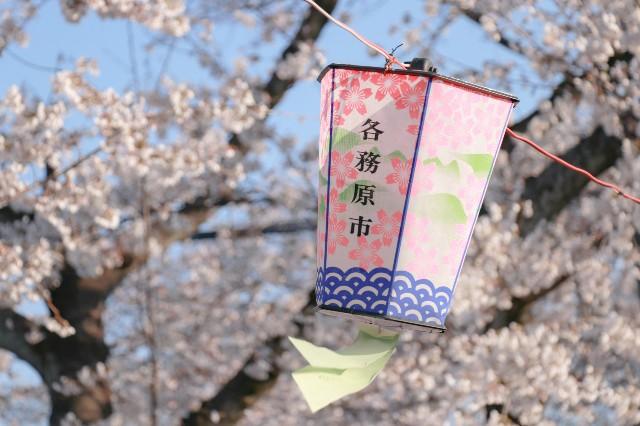 f:id:hira2shiatsu:20190404152649j:image