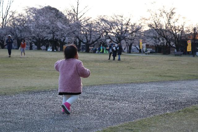 f:id:hira2shiatsu:20190404153429j:image
