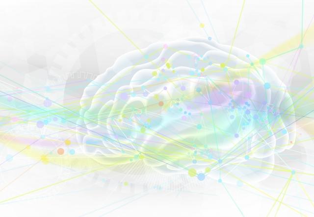 脳 オキシトシン