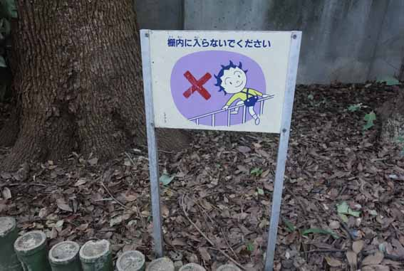 f:id:hiraitako:20190204125530j:plain