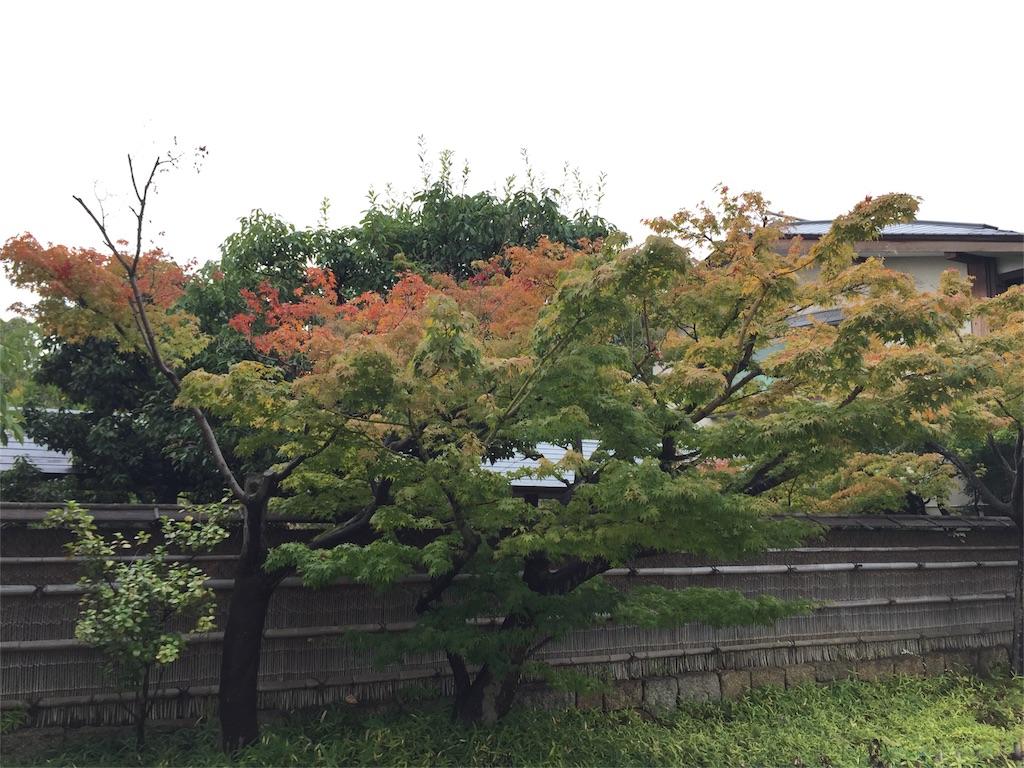 f:id:hirakata4235:20160831141923j:image
