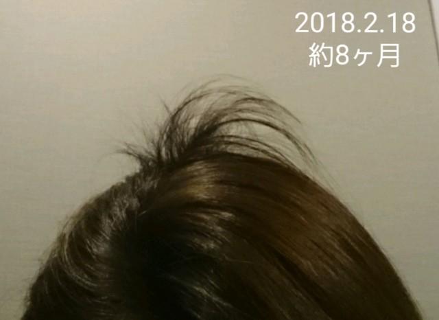 f:id:hirakegoma20190508:20190609184728j:image