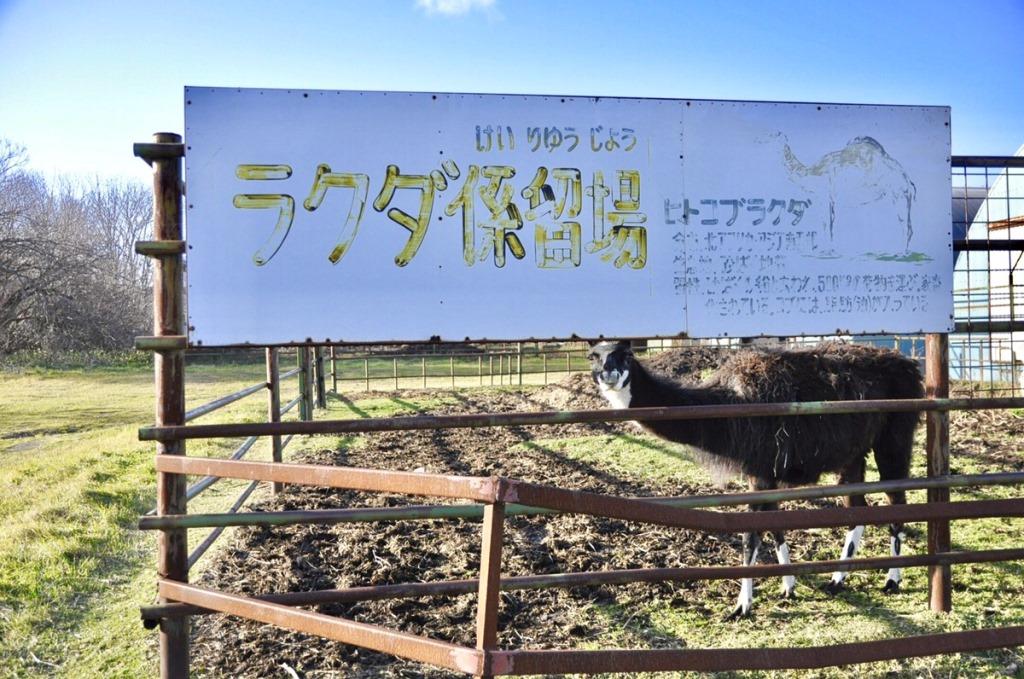 f:id:hirakocha:20171112213453j:plain