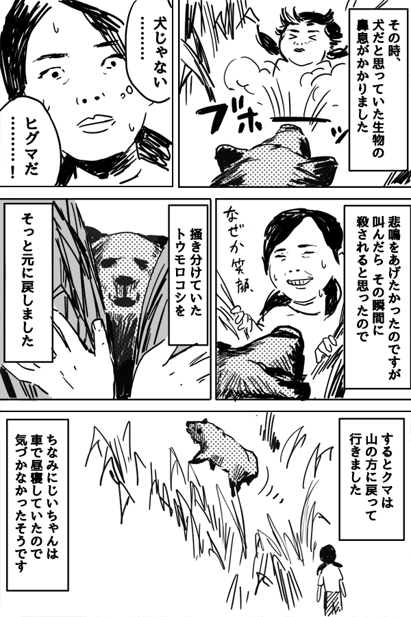 f:id:hirakocha:20171124160823p:plain