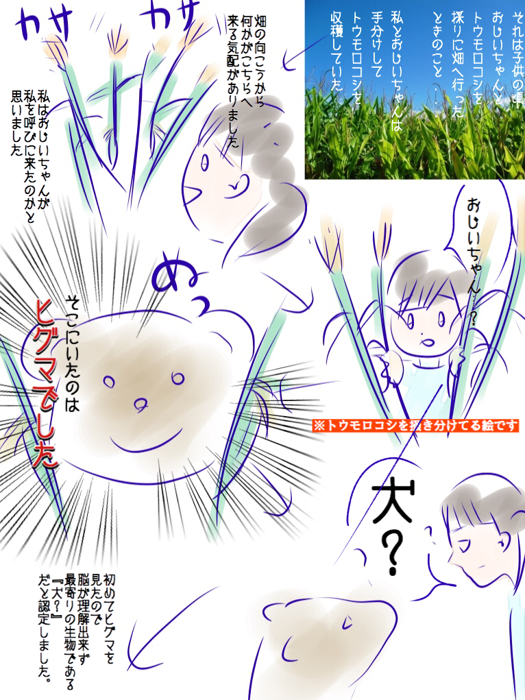 f:id:hirakocha:20171203121408p:plain