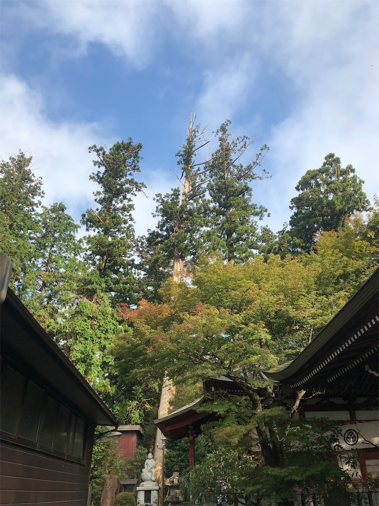 f:id:hirano4649:20181020192913j:image