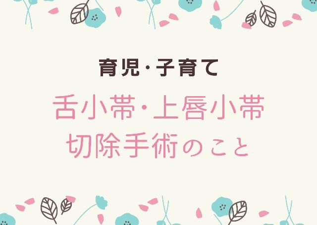 f:id:hirara185:20200702100605j:plain