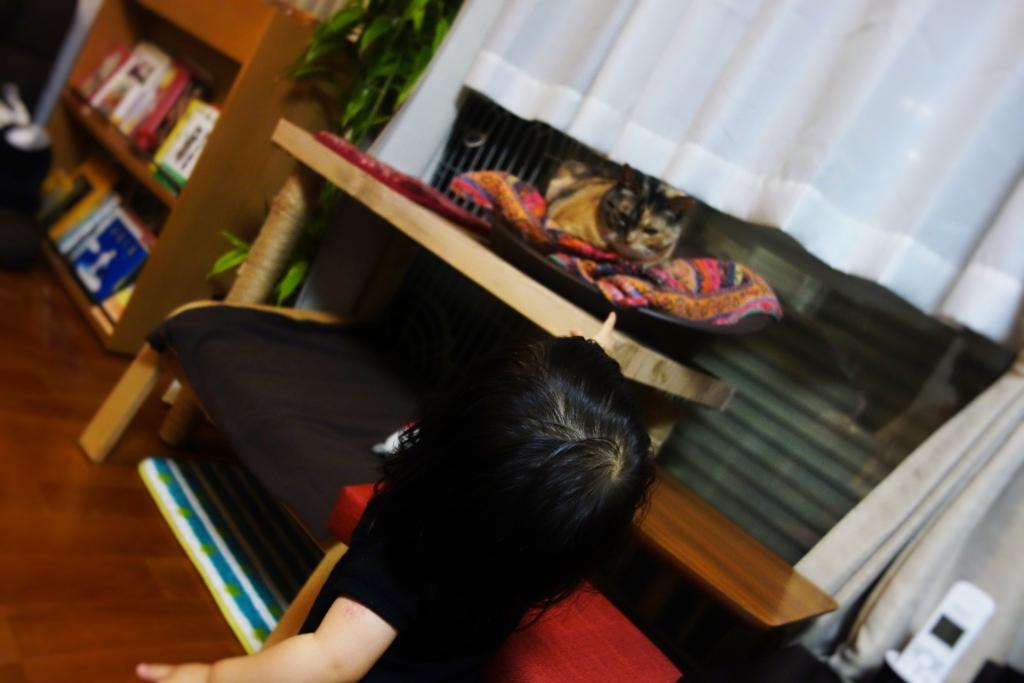 f:id:hiraryo0201:20160618105730j:plain