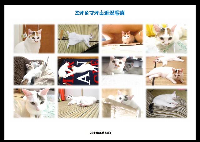 f:id:hiraryo0201:20170629214532j:image
