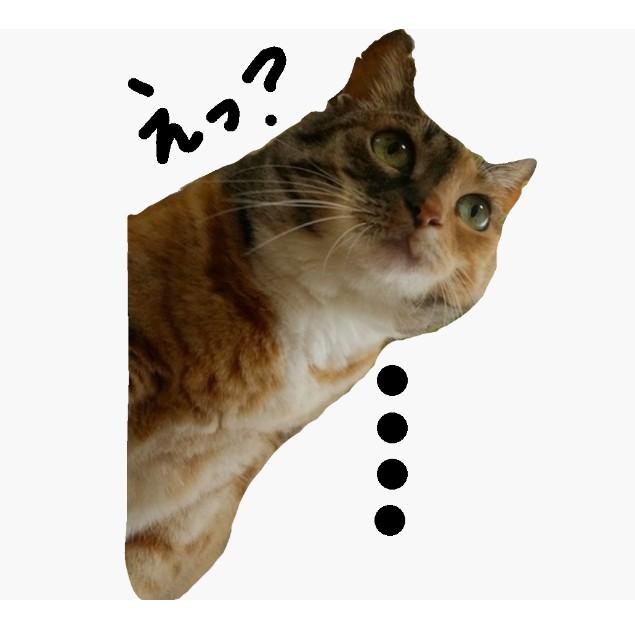 f:id:hiraryo0201:20170822203934j:image