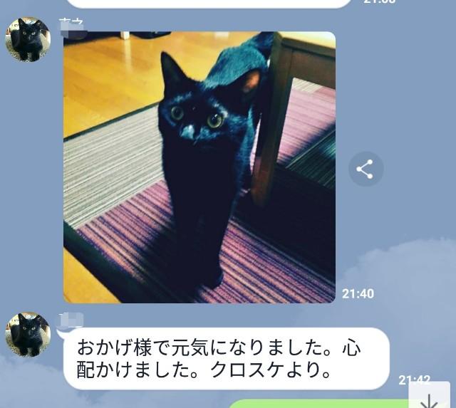 f:id:hiraryo0201:20180714183901j:image