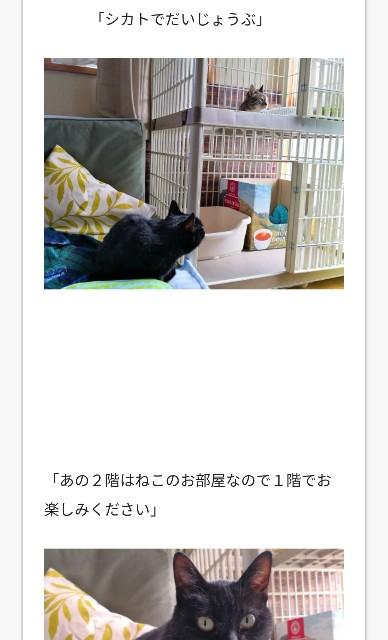 f:id:hiraryo0201:20180717195937j:image