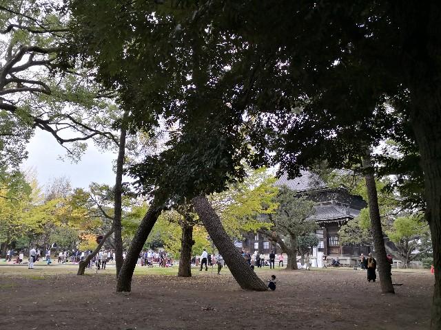 f:id:hiraryo0201:20181111181320j:image