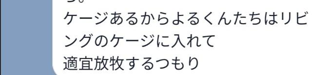 f:id:hiraryo0201:20190811085256j:image