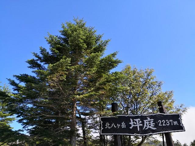 f:id:hiraryo0201:20190915175133j:image