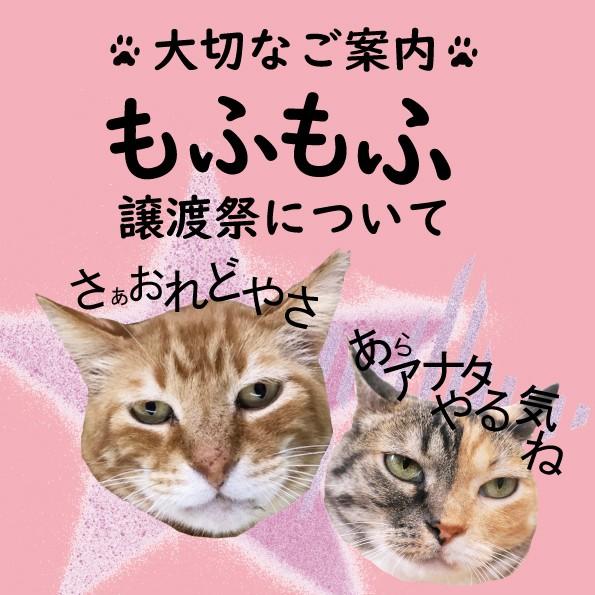 f:id:hiraryo0201:20191213003732j:image
