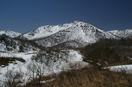 H240427野伏ヶ岳6