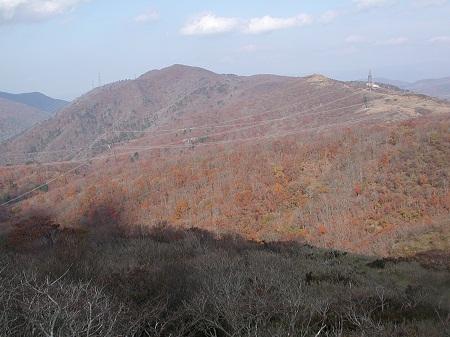 20091107七七頭・赤坂5