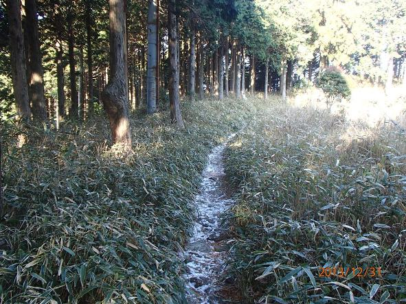 131226-140102kumanokodo16 今山行最高所付近の道の様子