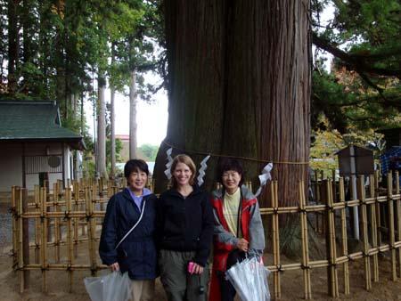 2010amakazari1.jpg