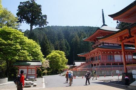 20140511比叡山1