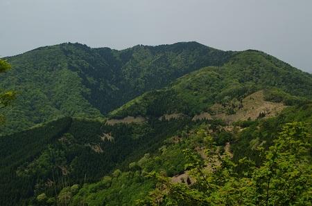 20110514青葉山5