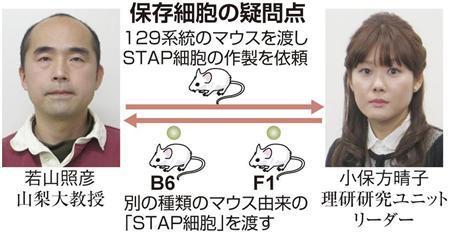 f:id:hirasawayuuta:20140326144556j:image:left