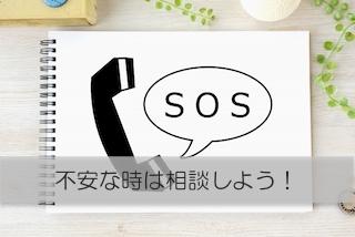 f:id:hirasol169:20190612120716j:plain