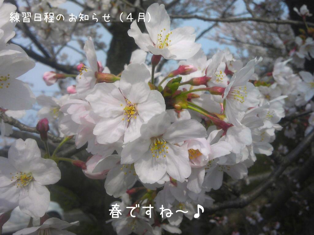 f:id:hirasui:20160331131237j:plain