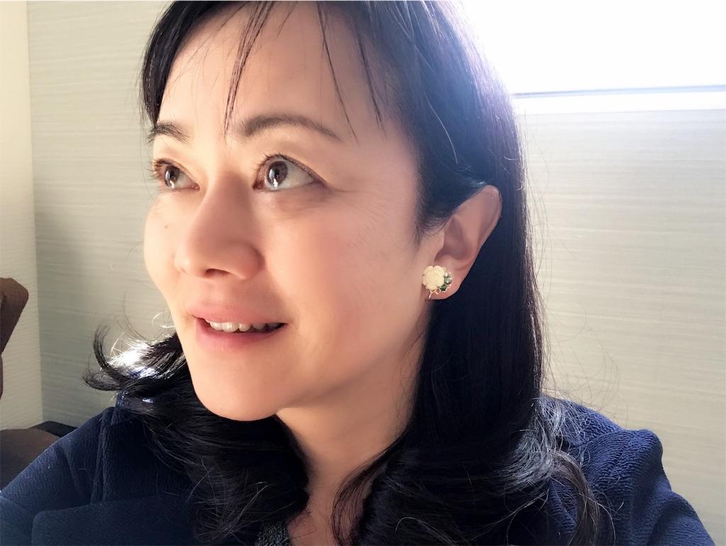 f:id:hiratafujika:20181214124408j:image