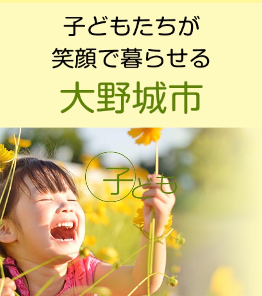 f:id:hiratafujika:20190213224310j:image