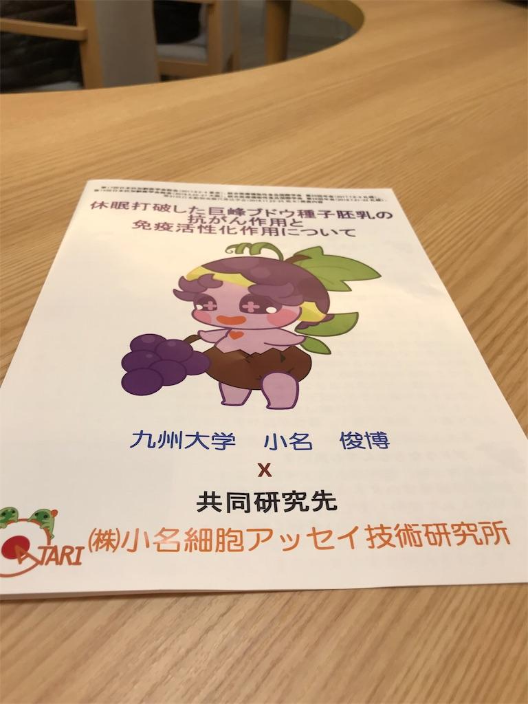f:id:hiratafujika:20190228151932j:image