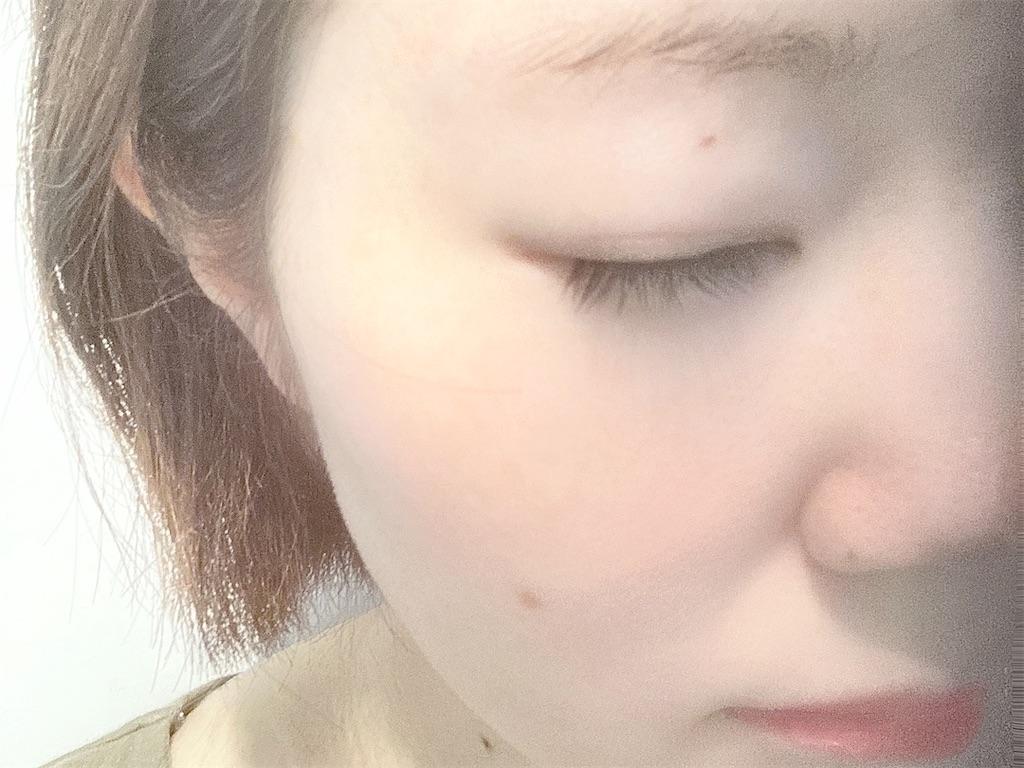 f:id:hirataikahono:20210810141233j:image