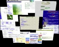f:id:hiratara:20051215220141j:image