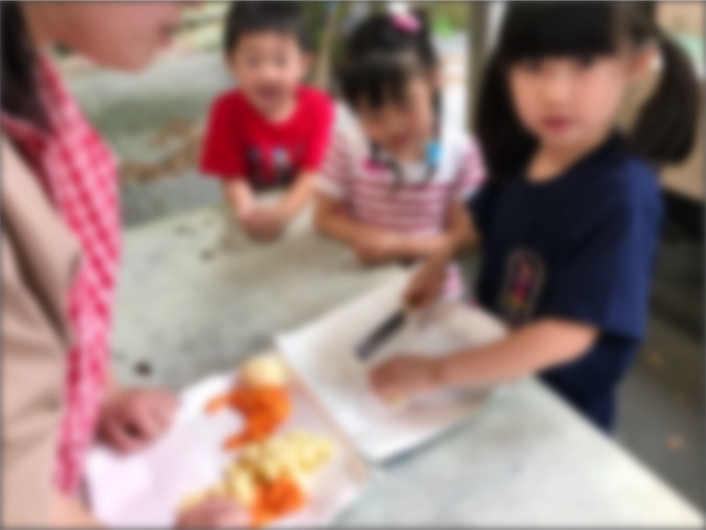 f:id:hiratsukafutaba:20180627222429j:image