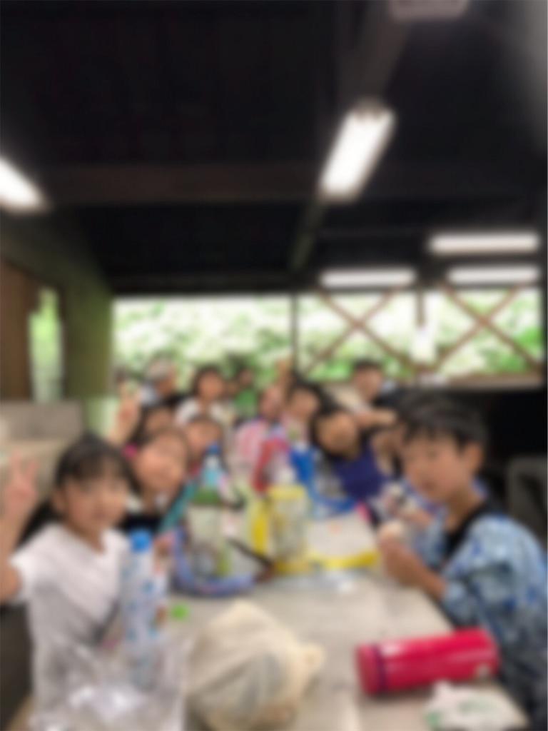 f:id:hiratsukafutaba:20190628001059j:image