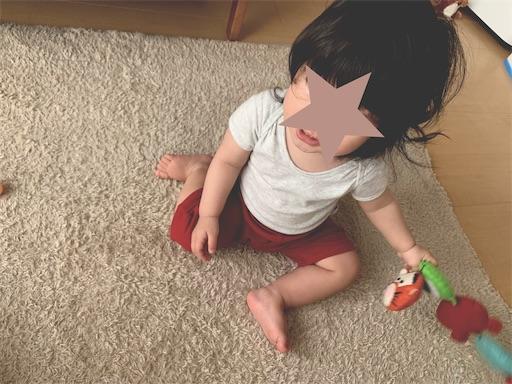 f:id:hirayome:20200511085750j:image