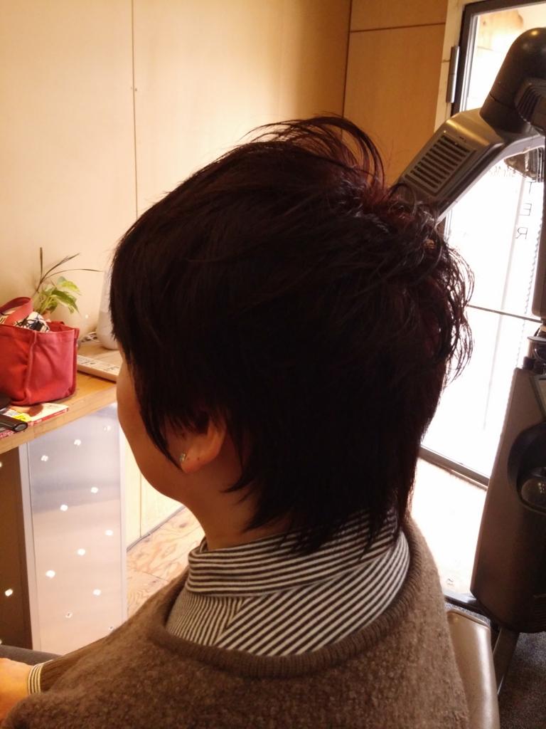 f:id:hiro-964c2:20170222214206j:plain