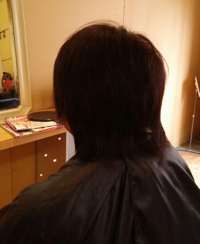 f:id:hiro-964c2:20170222214248j:plain