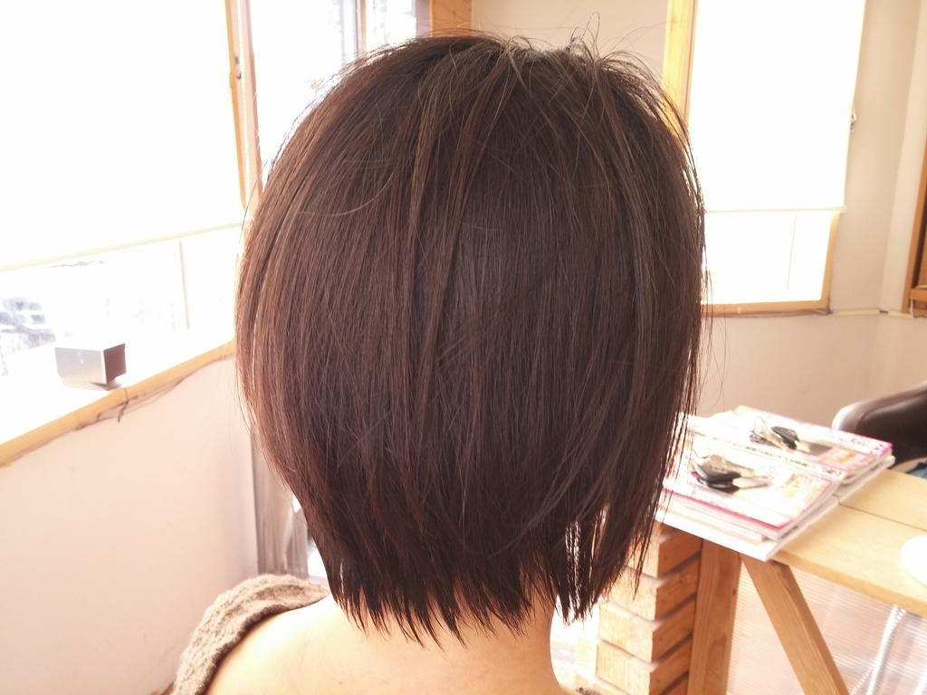 f:id:hiro-964c2:20190224211300j:plain