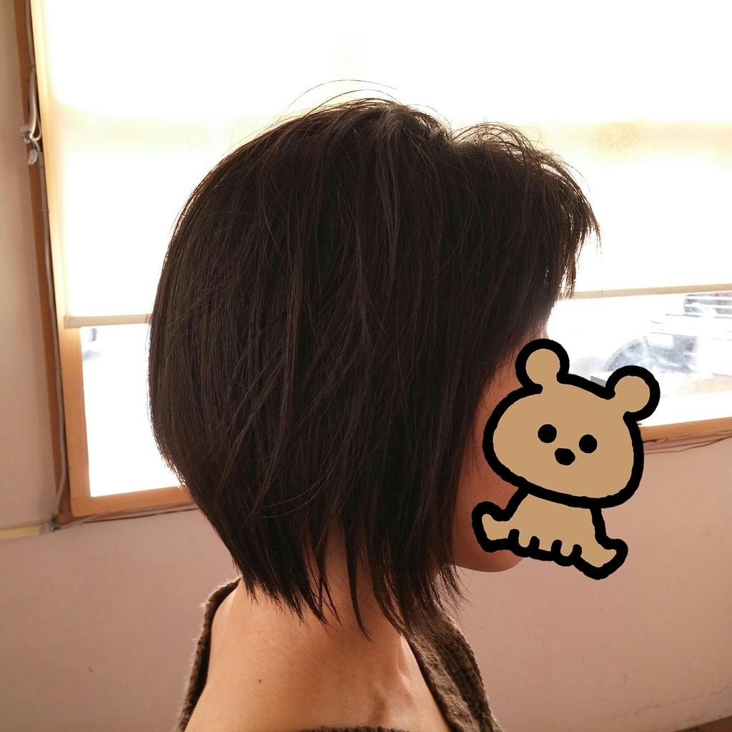 f:id:hiro-964c2:20190224211346j:plain