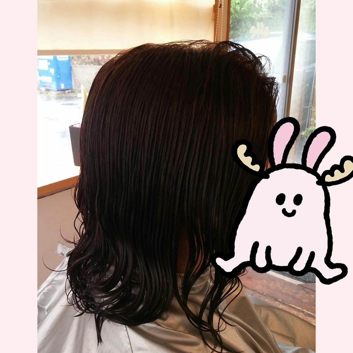 f:id:hiro-964c2:20190714123320j:plain