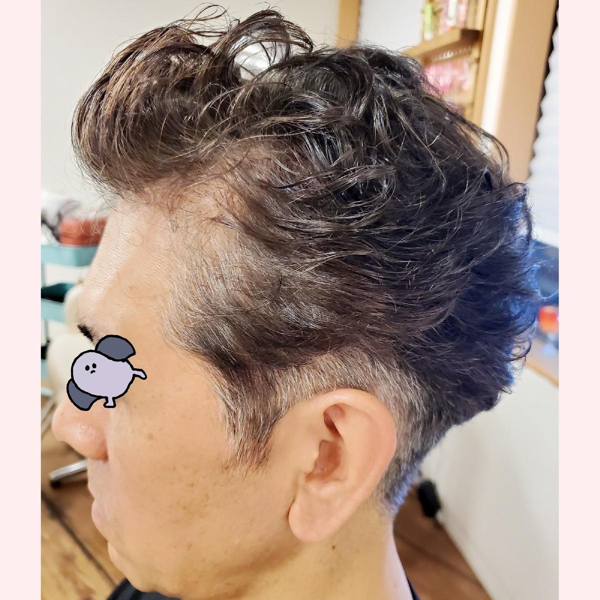 f:id:hiro-964c2:20191224002425j:plain