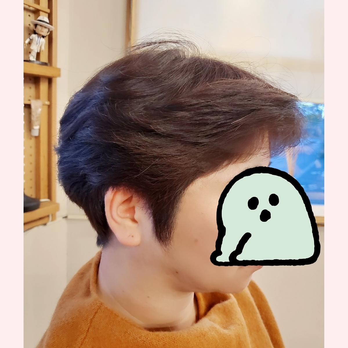 f:id:hiro-964c2:20200121182852j:plain