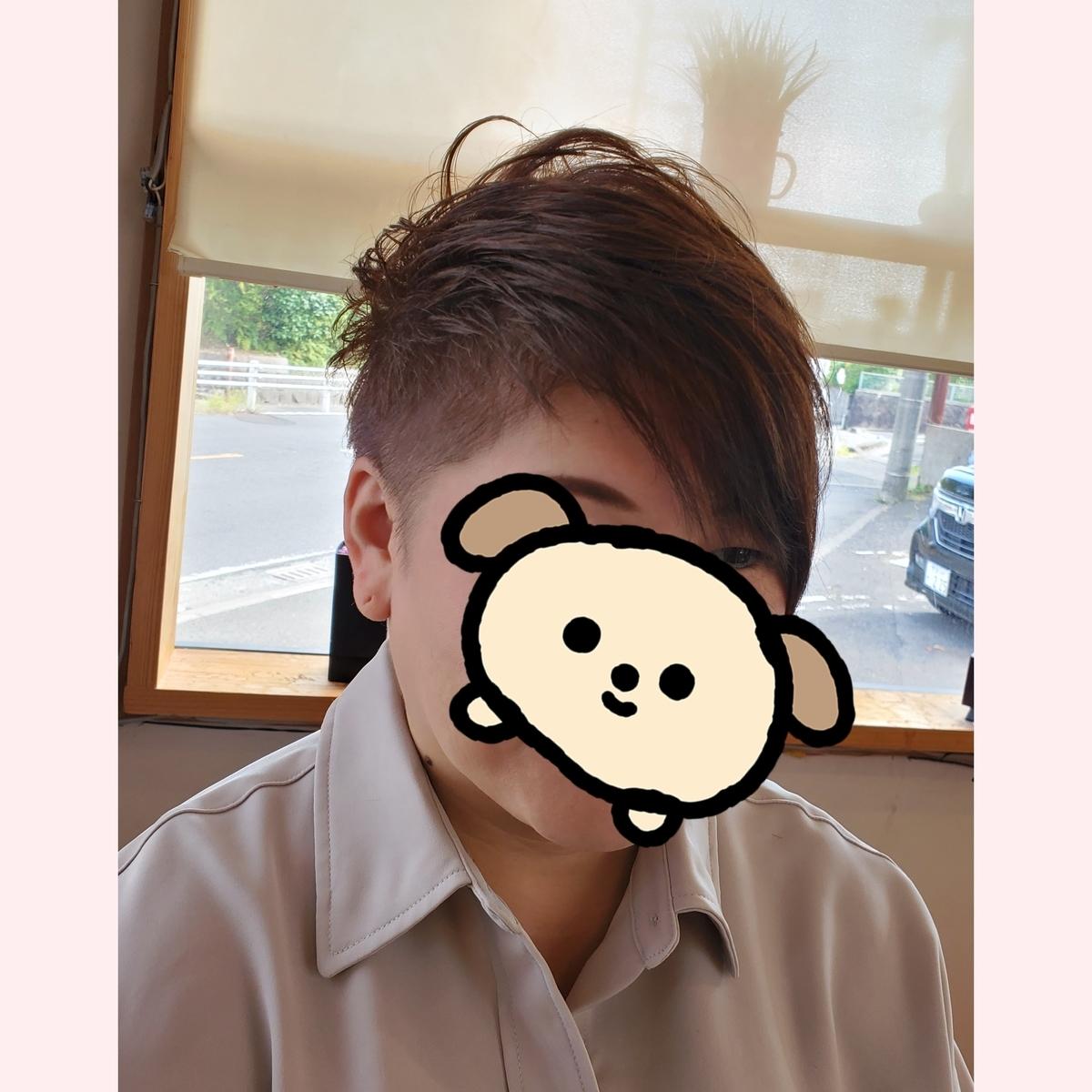 f:id:hiro-964c2:20201028145213j:plain