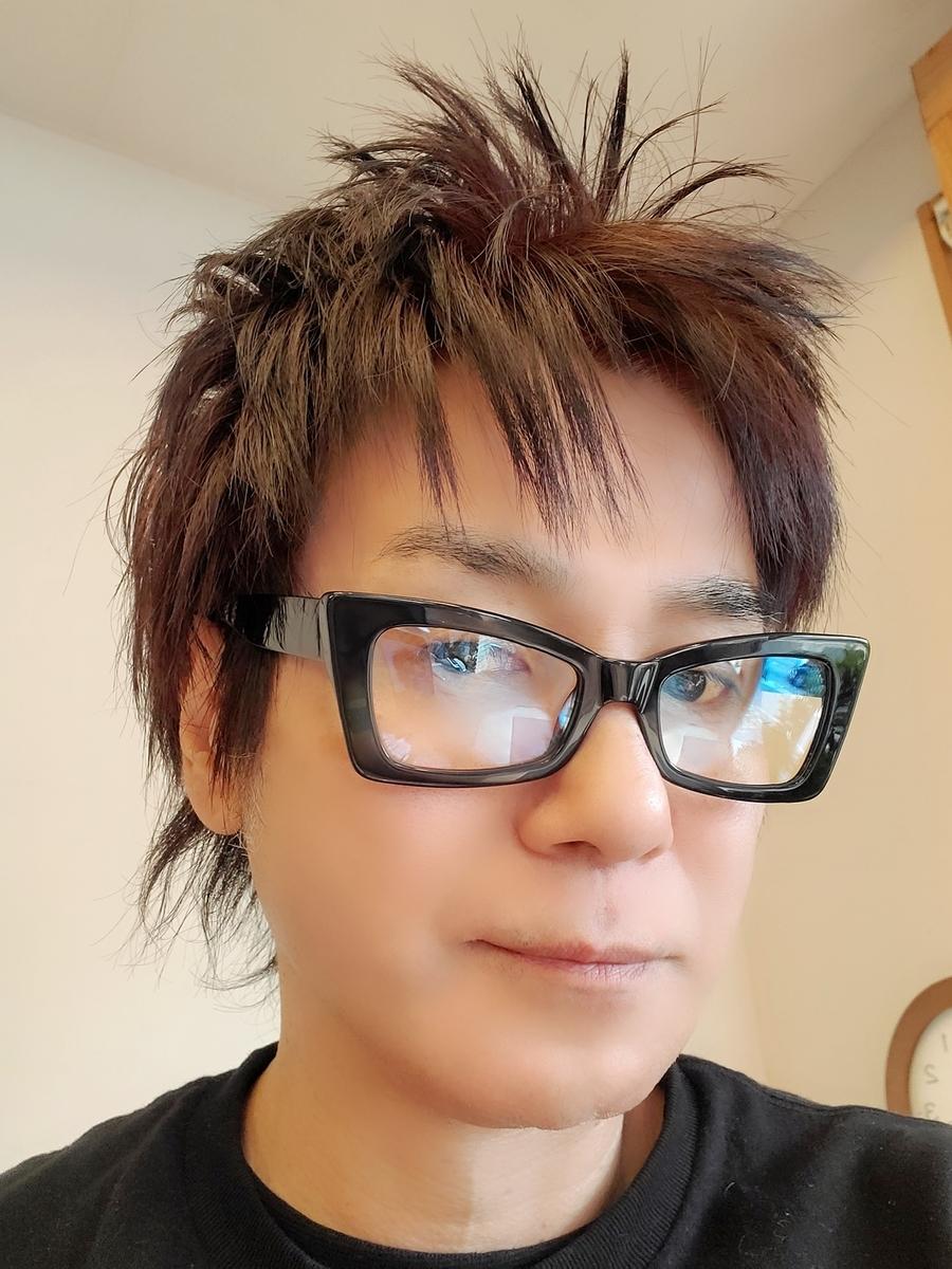 f:id:hiro-964c2:20210107131305j:plain
