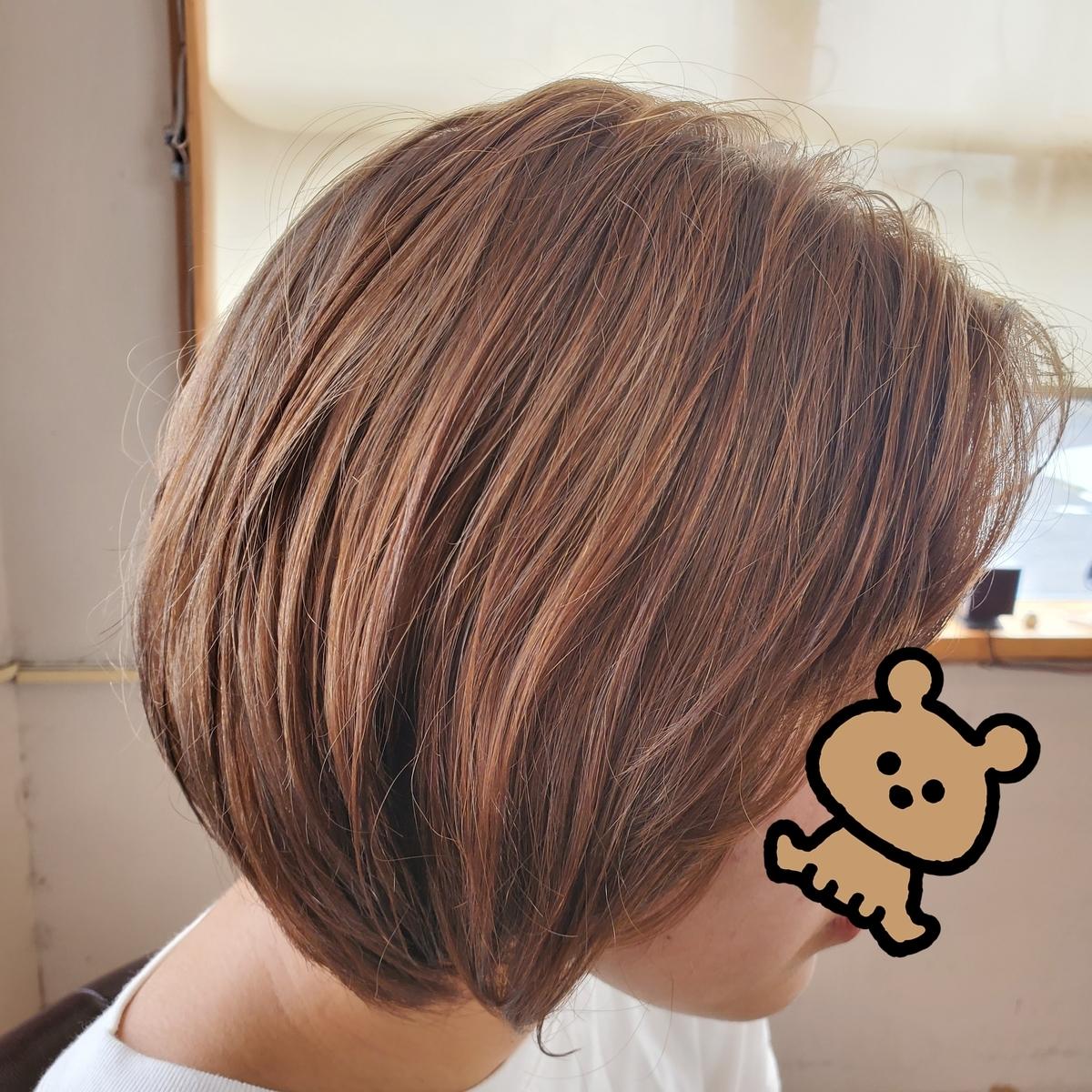 f:id:hiro-964c2:20210316130222j:plain