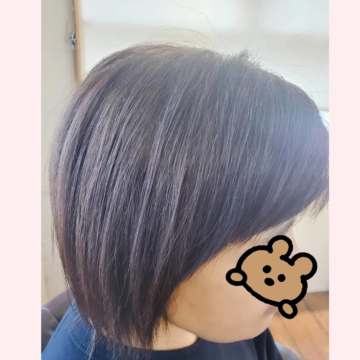 f:id:hiro-964c2:20210401171149j:plain