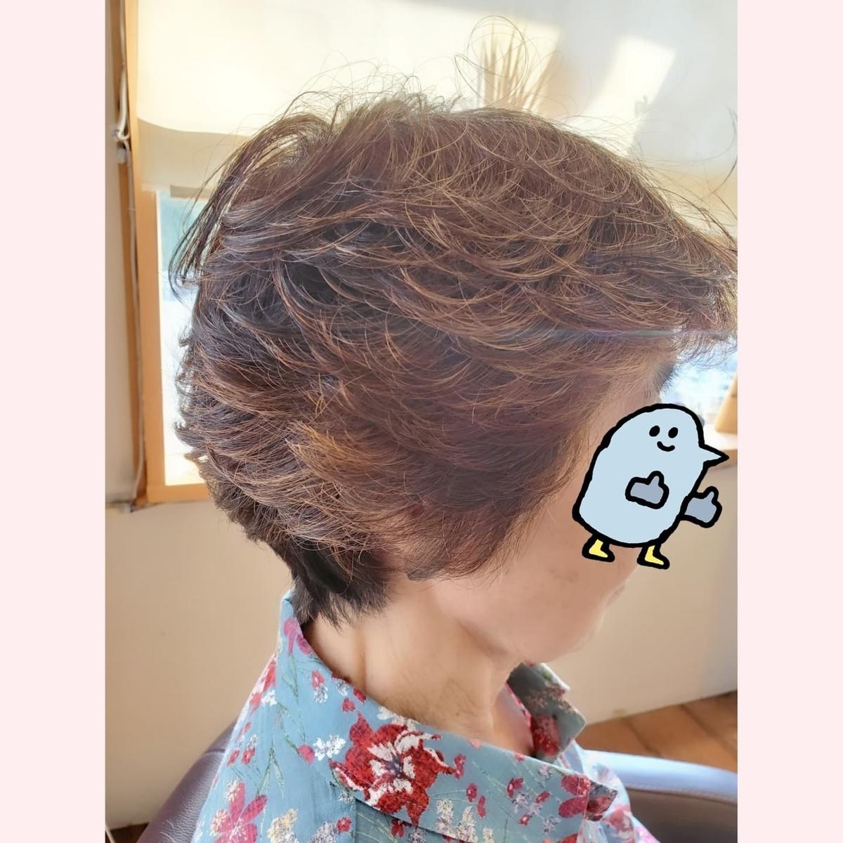 f:id:hiro-964c2:20211009213642j:plain